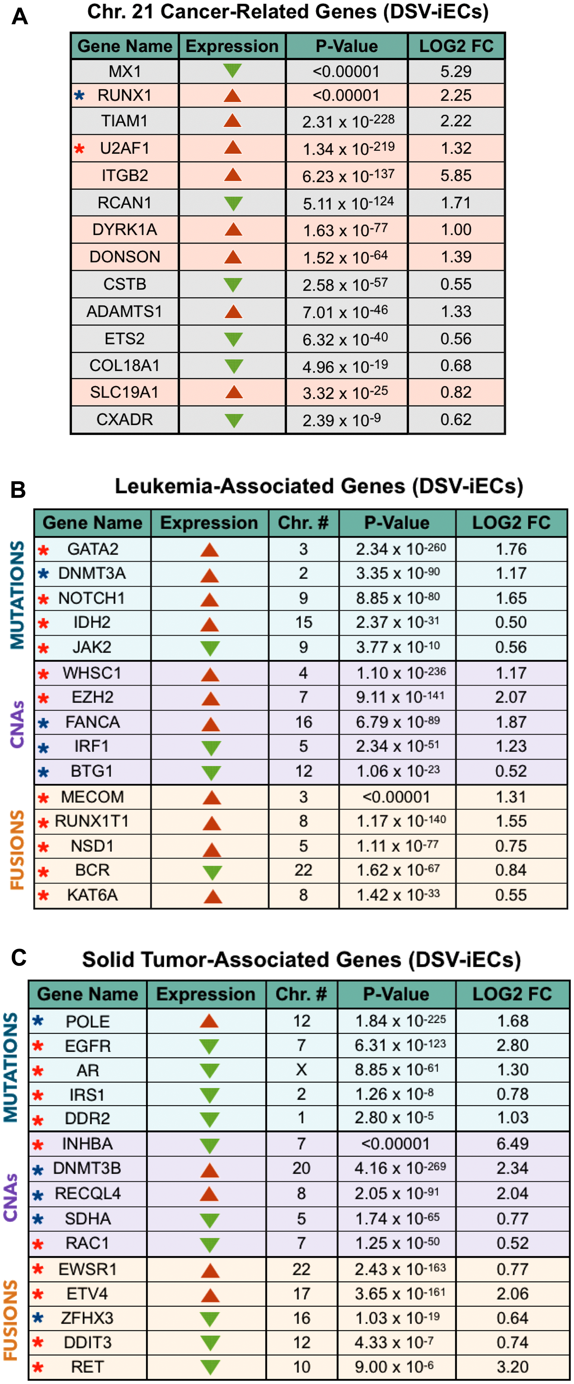 DS endothelial perspective on tumor development: chromosome 21 cancer-related genes, leukemia-associated genes, solid tumor-associated genes.