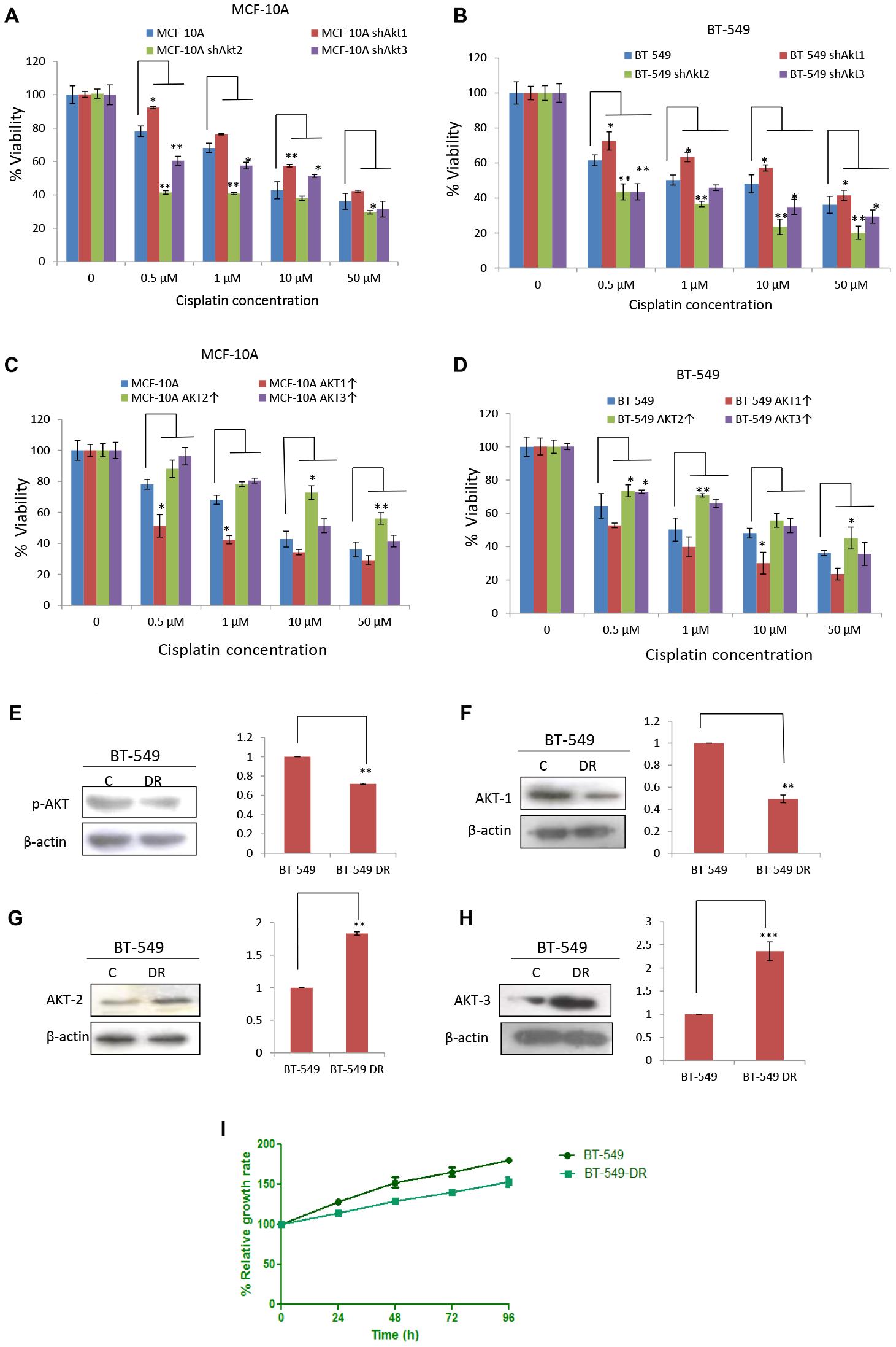 Knockdown of AKT1 abrogated sensitivity towards cisplatin.