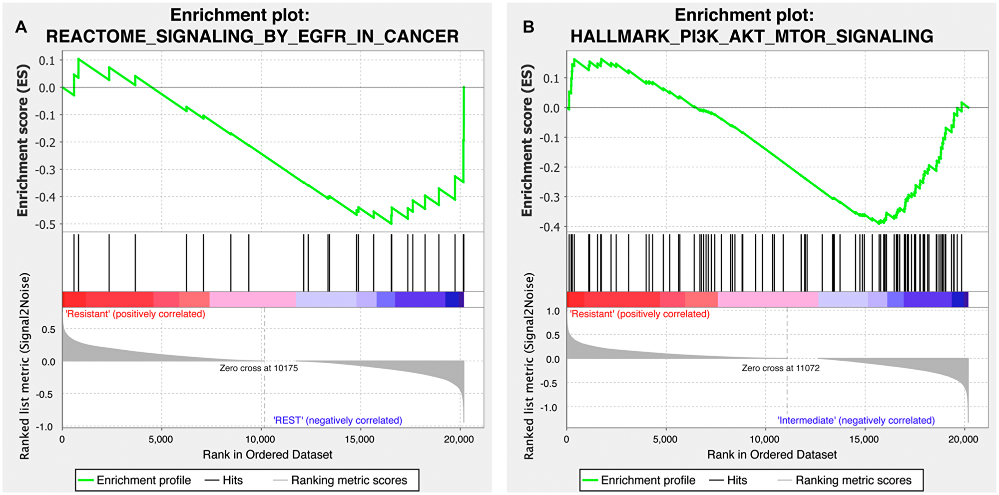 Gene set enrichment plot of the EGFR and PI3K-AKT-mTOR signaling pathways for the copanlisib and cetuximab cohorts.
