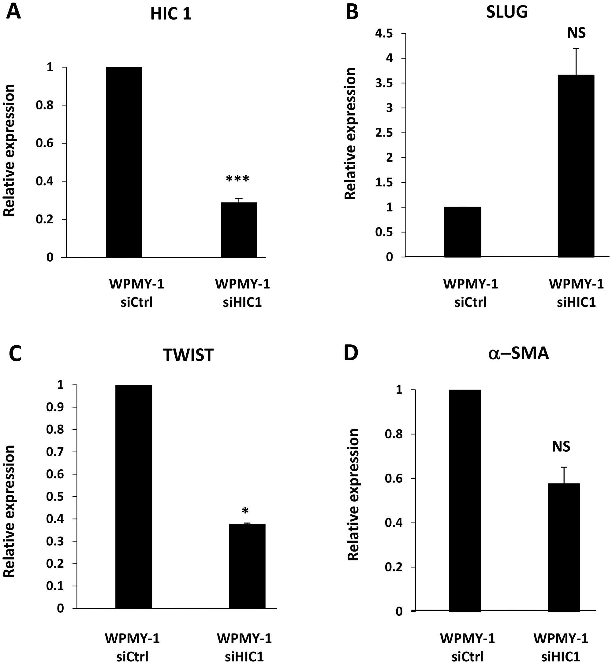 HIC1 regulates the expression of the EMT-inducing transcription factor SLUG in the myofibroblastic cell line WPMY-1.