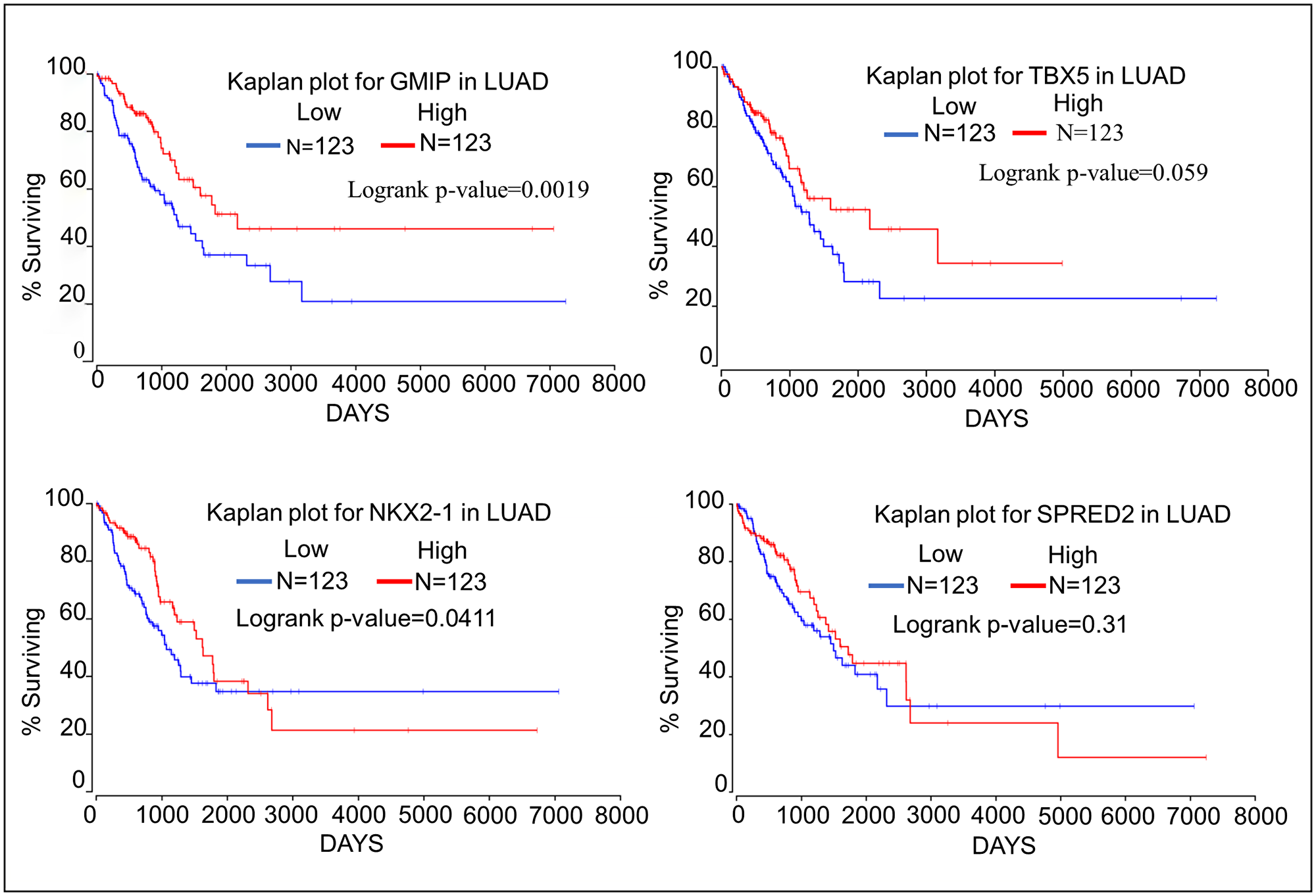 Kaplan–Meier plots showing the relationship of tumor suppressor gene expression to lung cancer patient survival using data from TCGA.