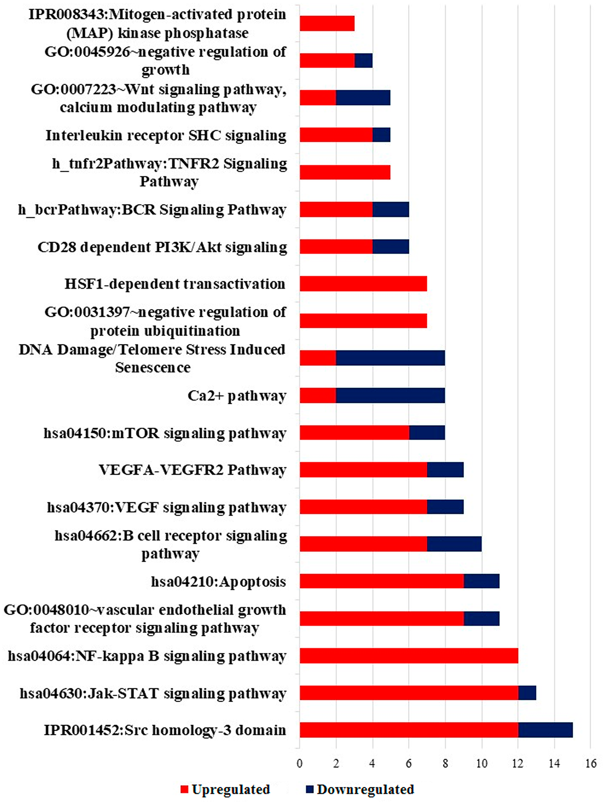 Significantly enriched pathway terms in DEGs.
