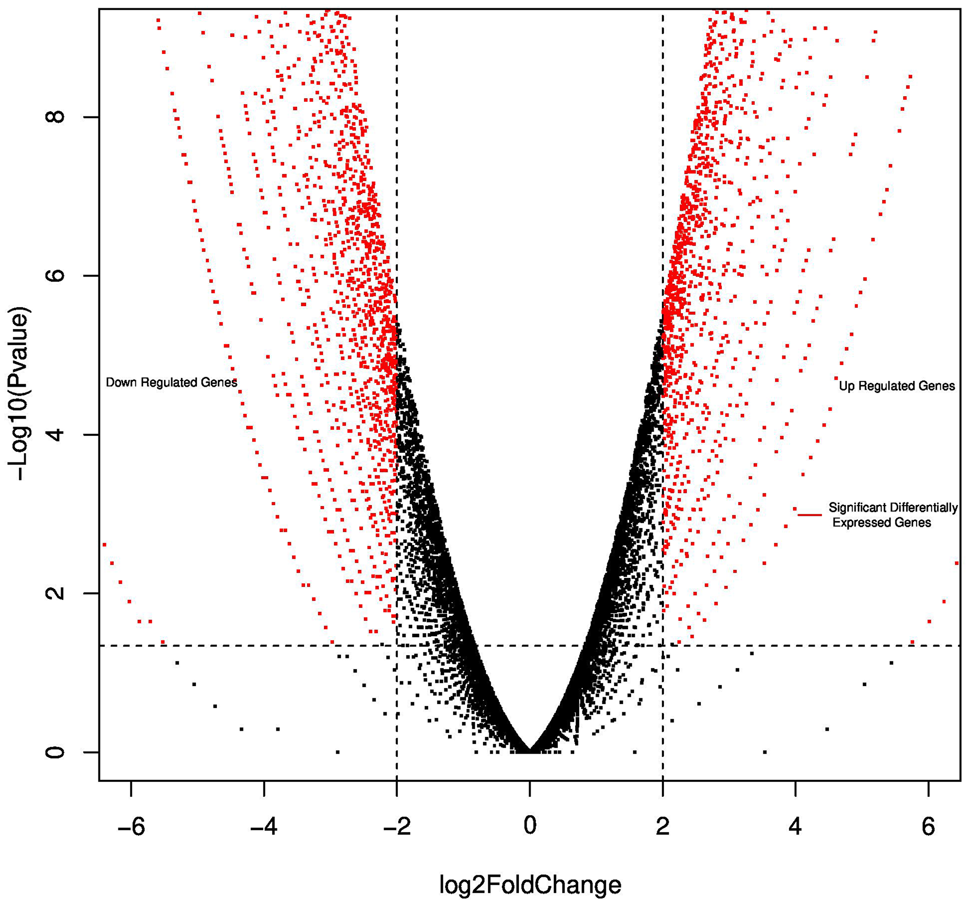 Volcano plot reporting P values against fold changes.