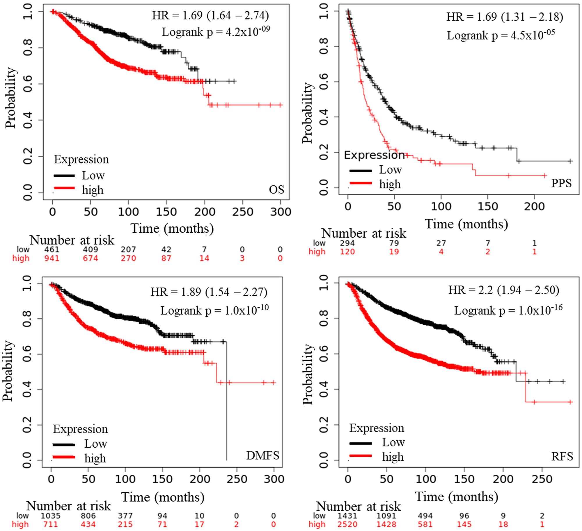 The prognostic value of mRNA level of AURKA in BC patients (Kaplan–Meier plotter).