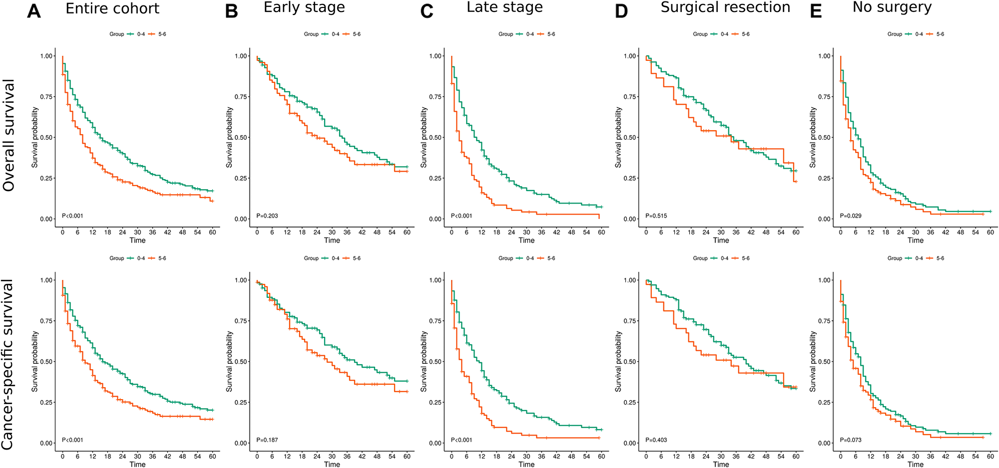 Kaplan Meier survival curves for overall and cancer specific survival.