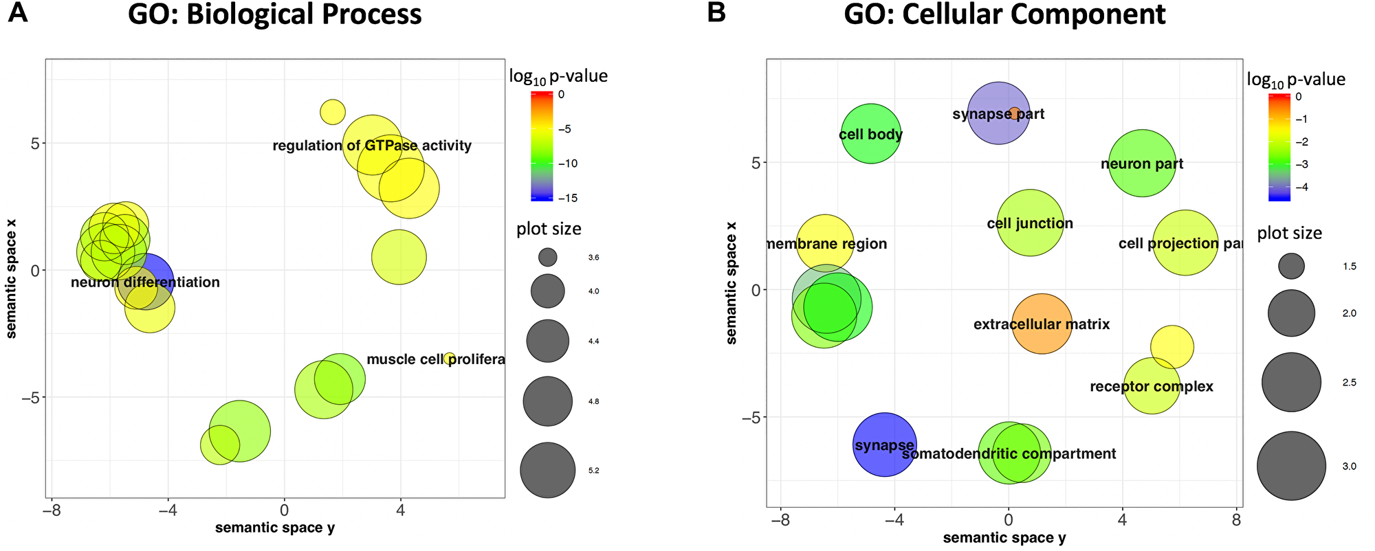 Genes closest to or overlapping target regions are enriched for Neuronal genes.