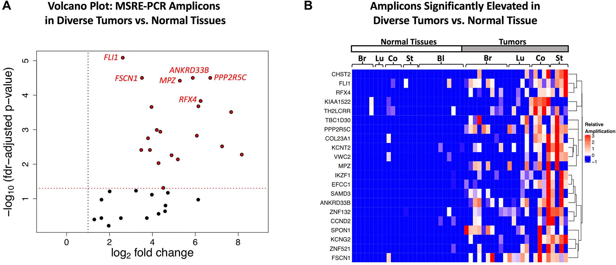 Multiplexed MSRE-PCR of the target regions in genomic DNAs from diverse tumors versus normal tissue.