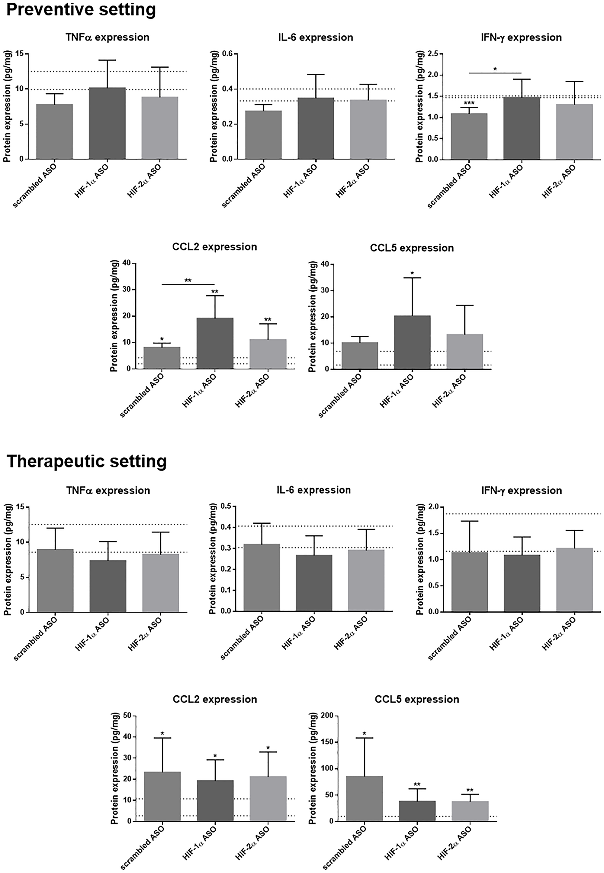 Effect of preventive and therapeutic HIF-1α and HIF-2α ASO treatment on hepatic protein expression of inflammatory markers in DEN-induced HCC mice.