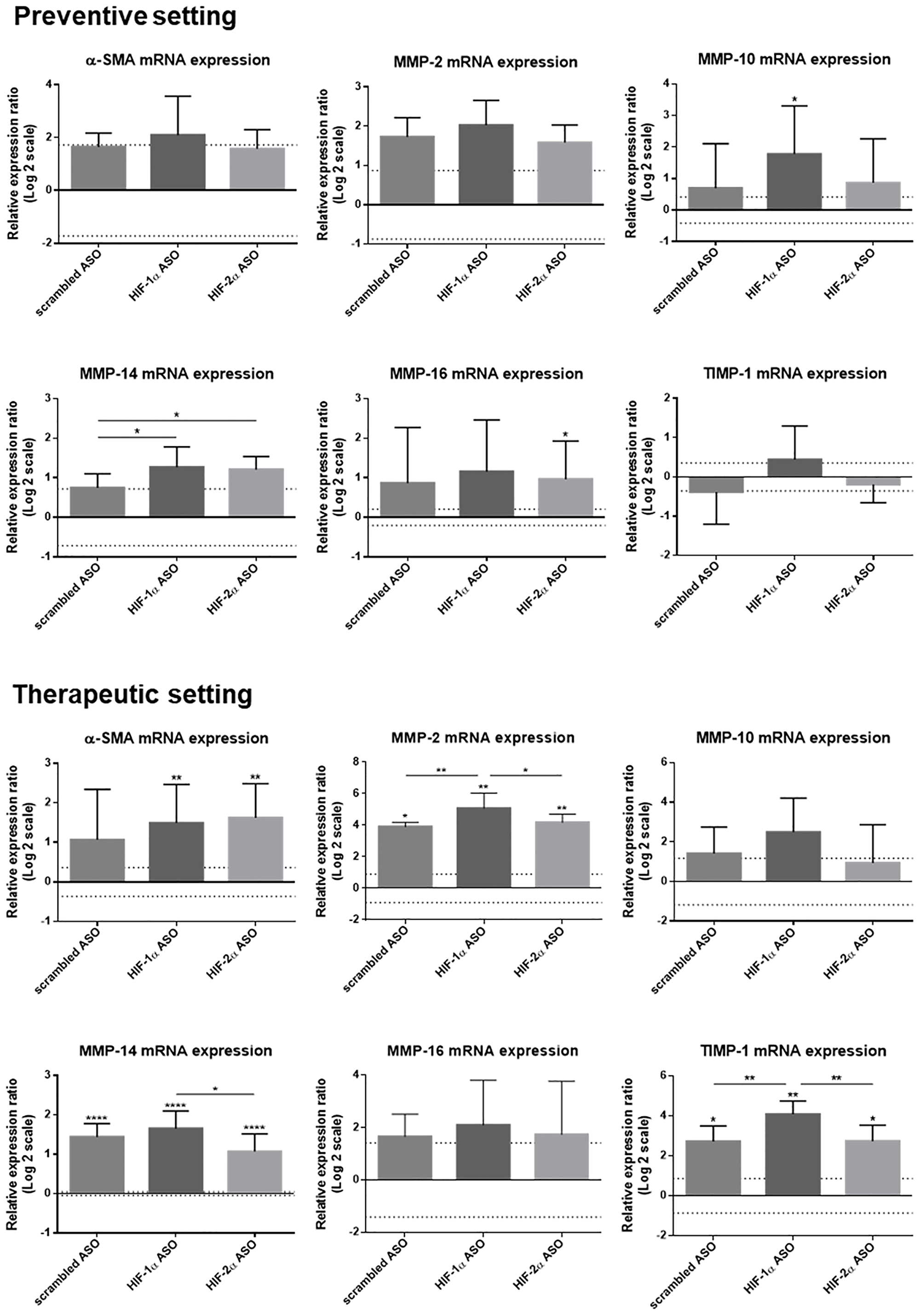 Effect of preventive and therapeutic HIF-1α and HIF-2α ASO treatment on fibrotic markers in the liver of DEN-induced HCC mice.
