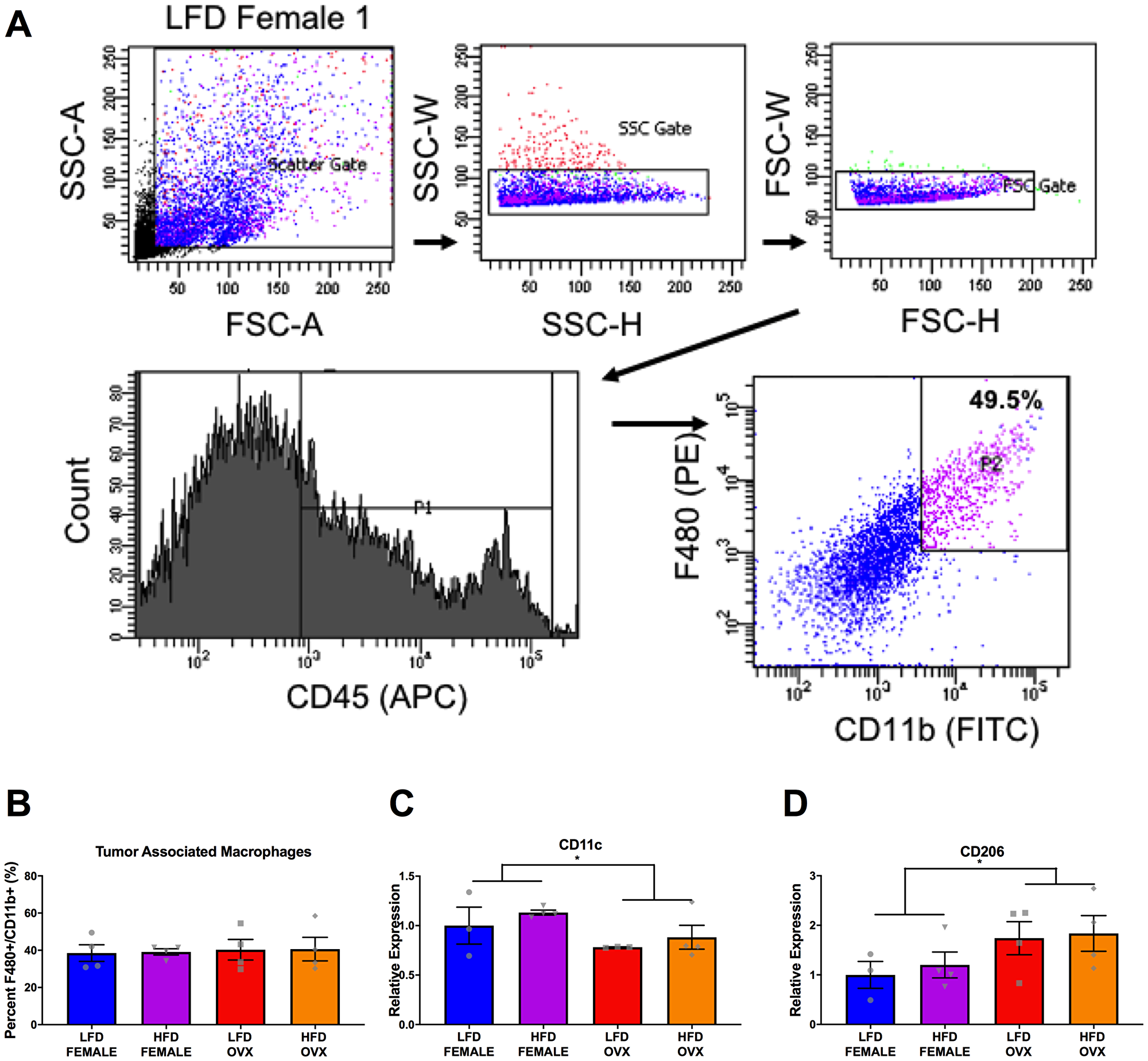 Differential tumor-associated macrophage phenotype in female and OVX mice.