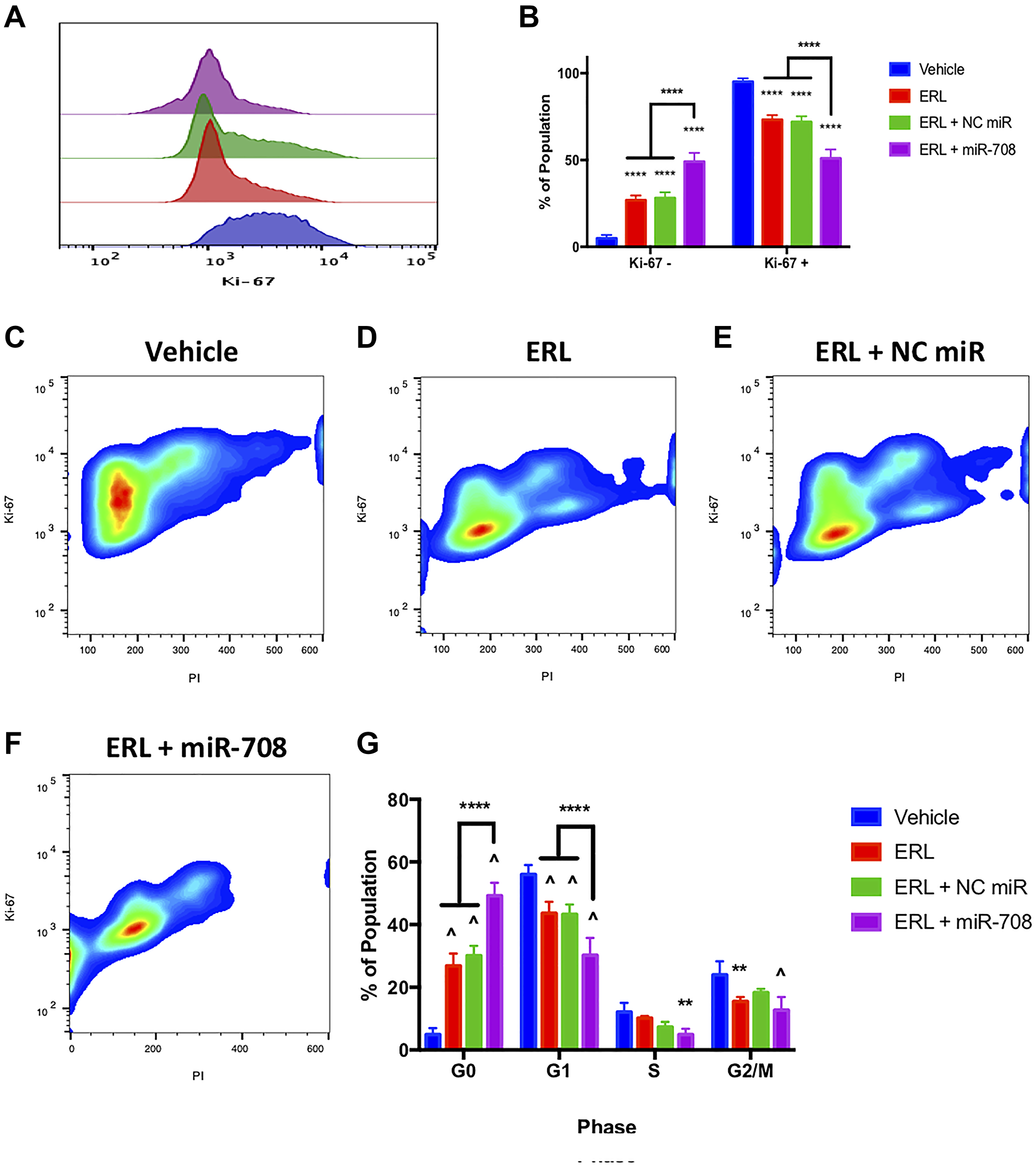 miR-708-5p enhances anti-proliferative effects of ERL in lung cancer cells.