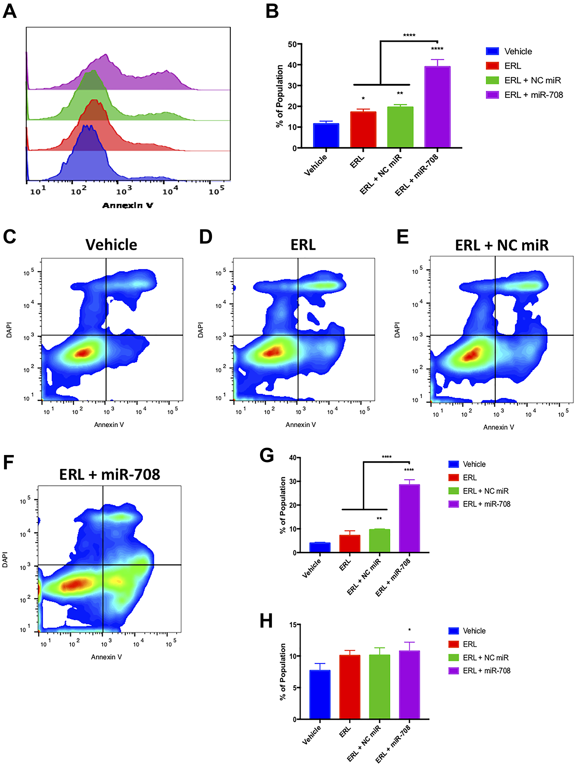miR-708-5p amplifies ERL-induced apoptosis in lung cancer cells.