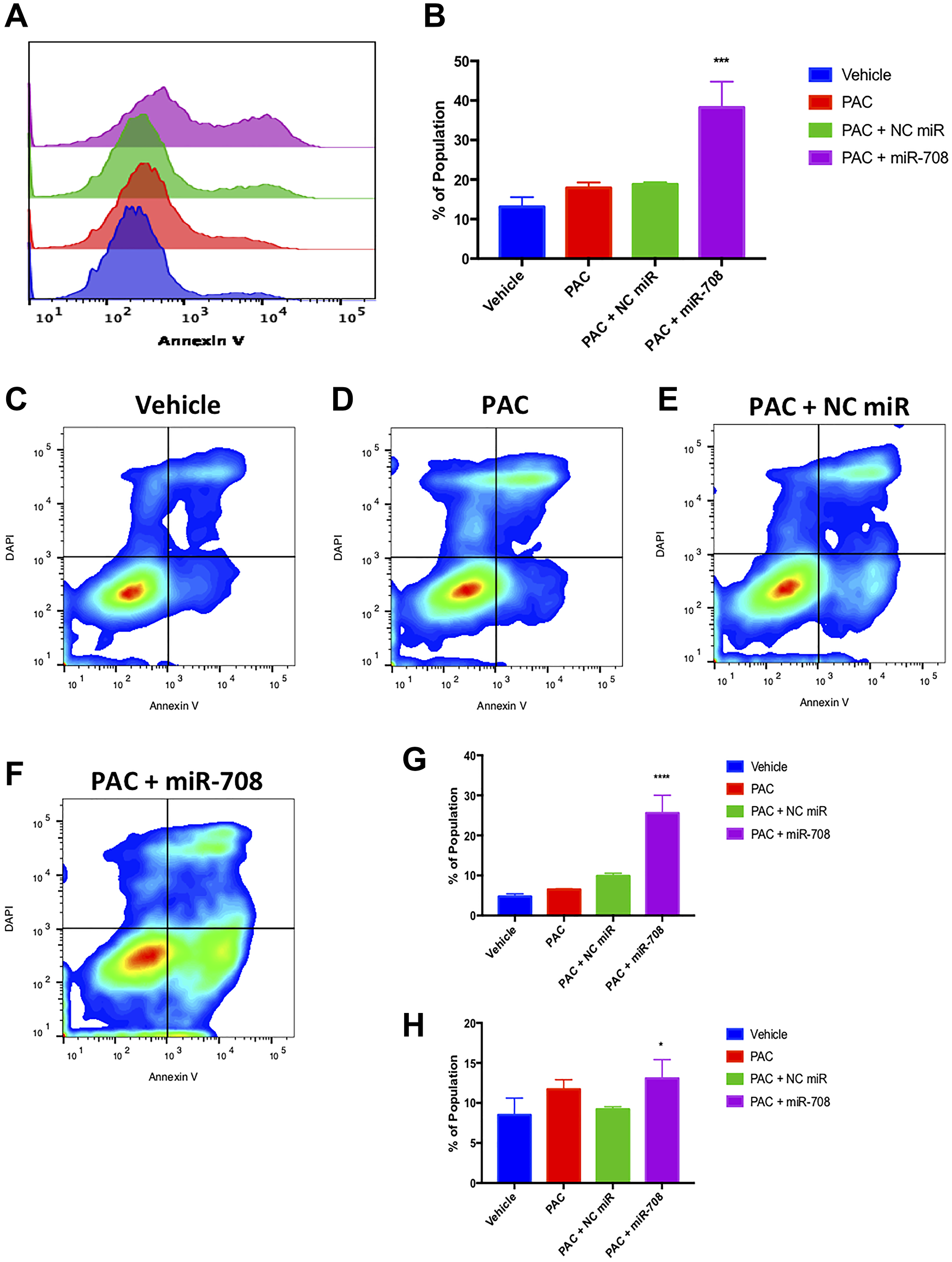 Combinatory miR-708-5p and PAC treatment induces apoptosis in lung cancer cells.