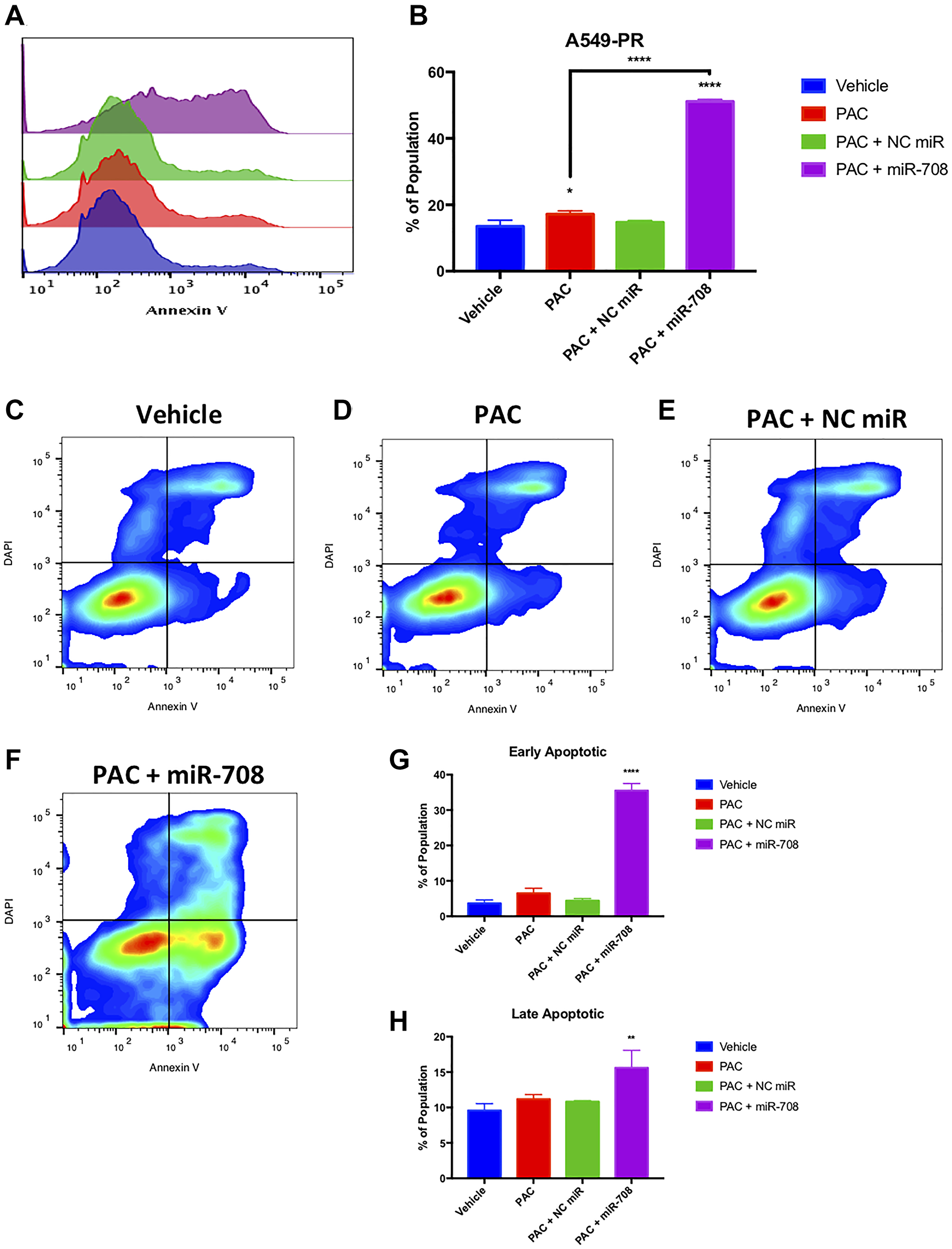 Combinatory miR-708-5p + PAC treatment induces apoptosis in A549-PR cells.