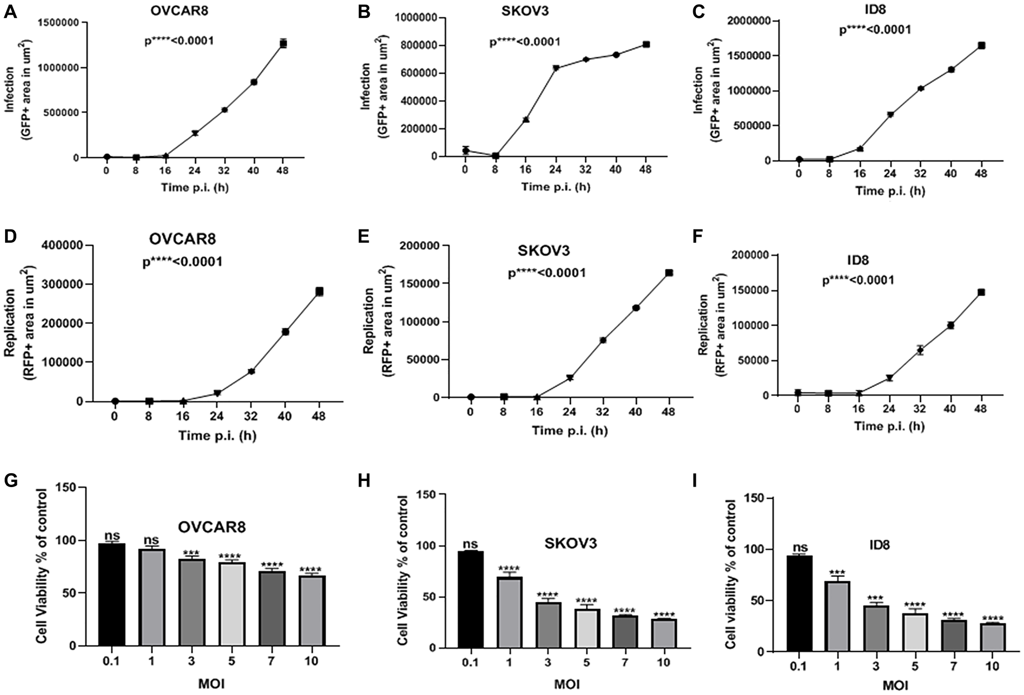MYXV infects, replicates in, and kills ovarian cancer cells in vitro.