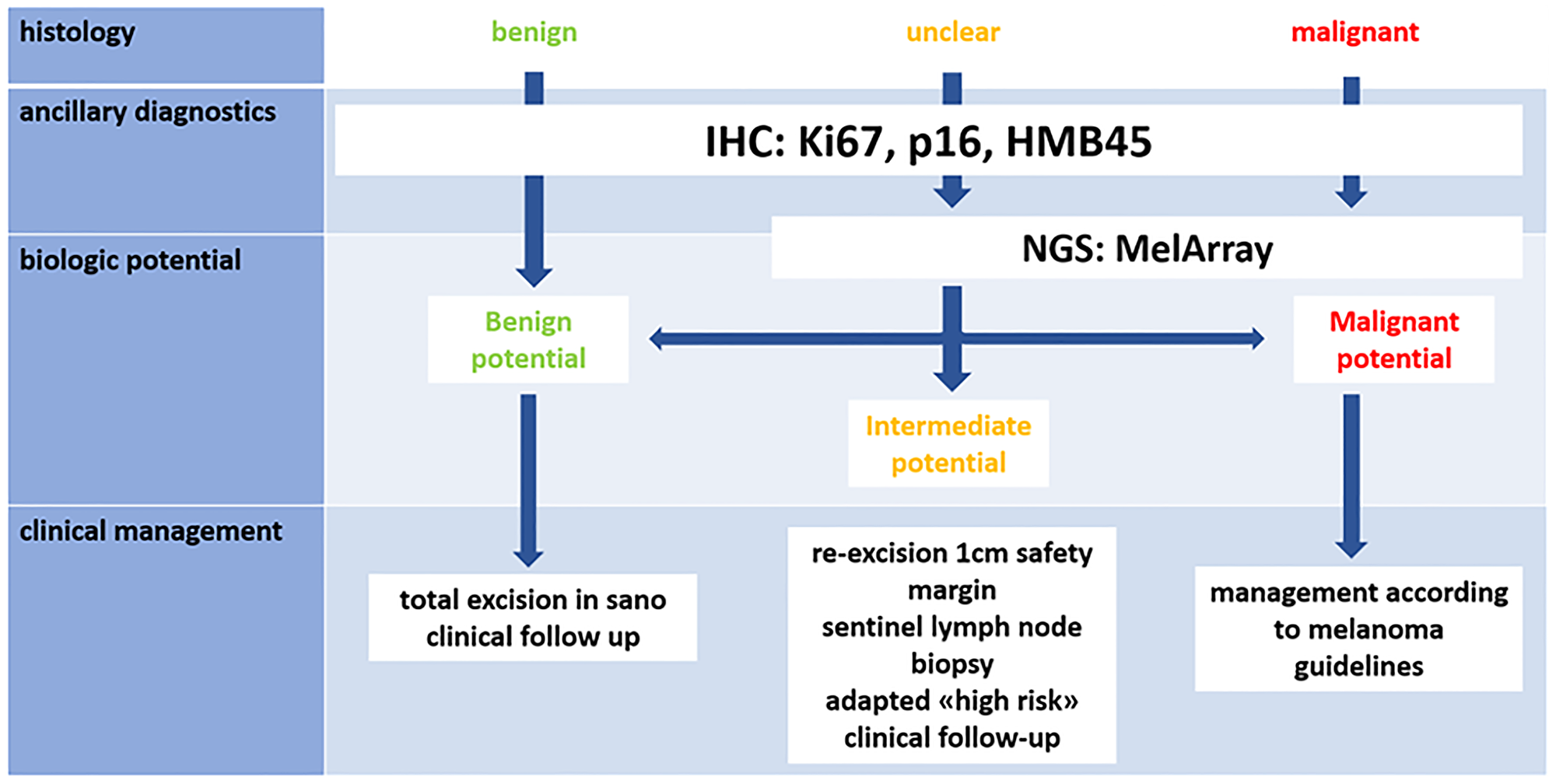 Proposed diagnostic and therapeutic algorithm [2].