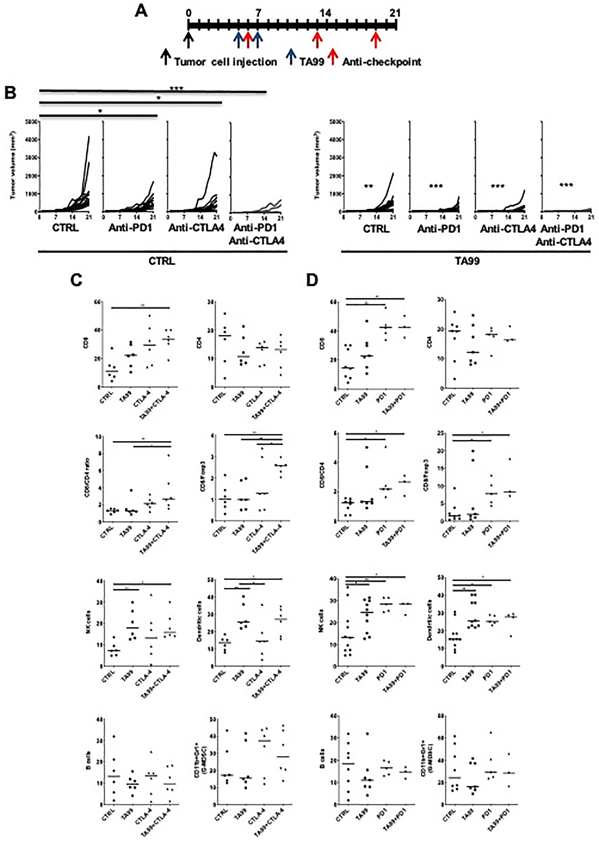 ICB enhanced the anti-tumor efficacy of TA99 in B16 subcutaneous melanoma.
