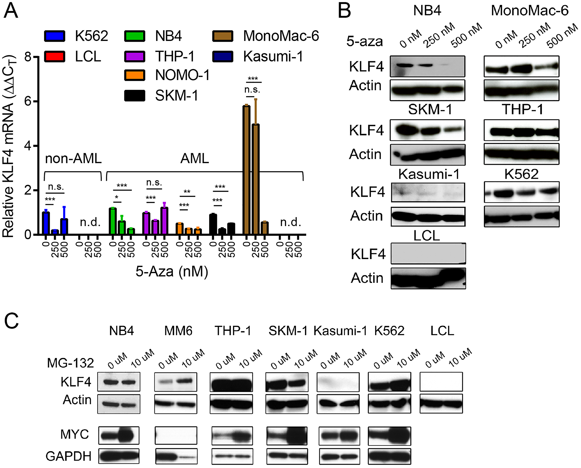 Epigenetic and post-translational regulation of KLF4 in AML cell lines.