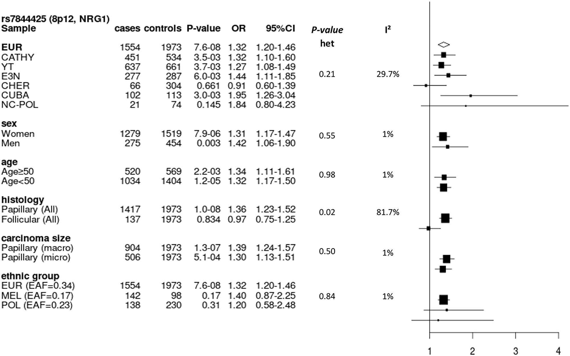 Forest plot of subgroup analyses for rs7844425 stratifying on study, sex, age group, histology and size of carcinoma in Europeans, and stratifying on population group in the entire dataset.