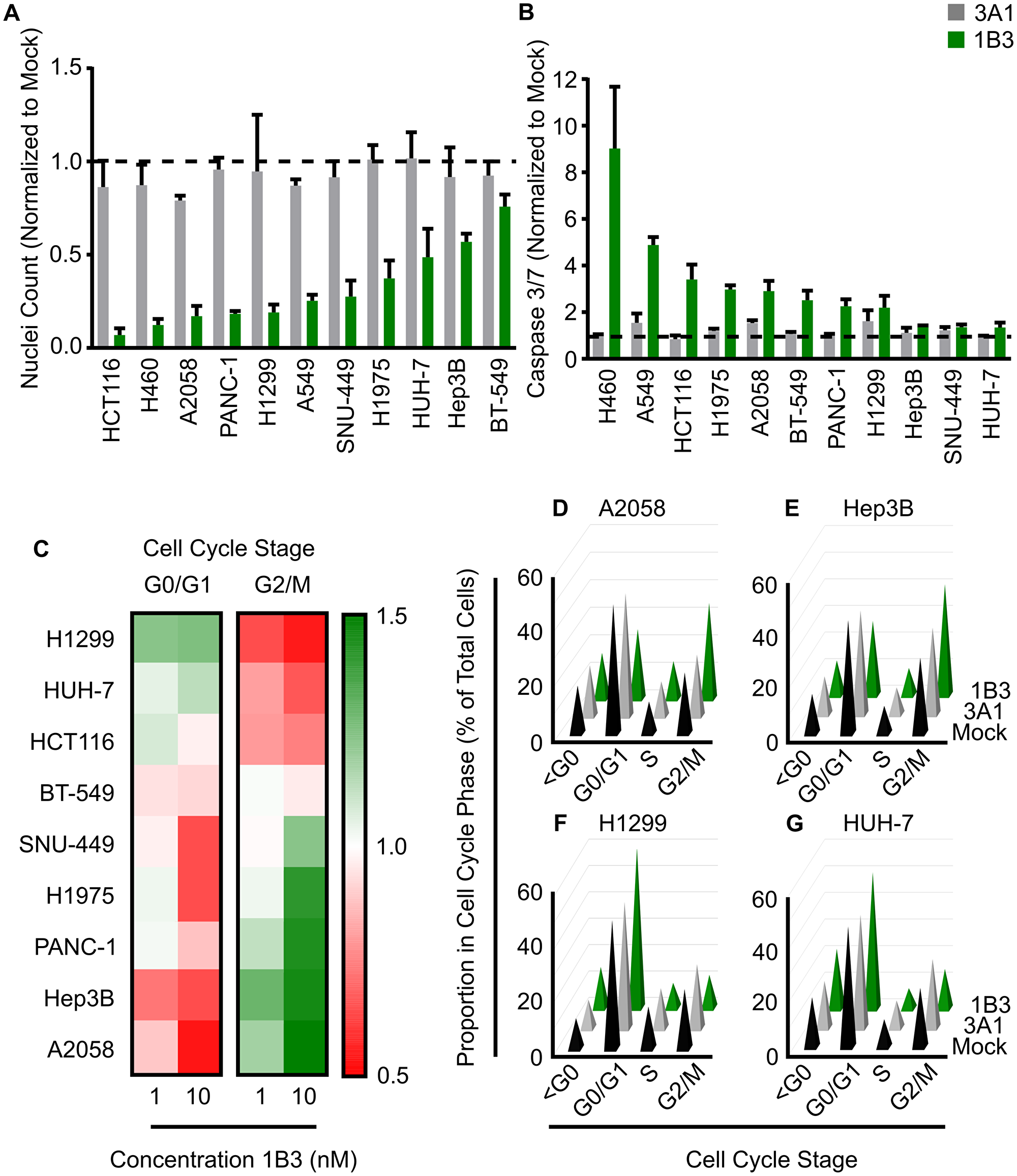 Effect of 1B3 on cell proliferation, apoptosis, and cell cycle in a panel of human cancer cell lines.