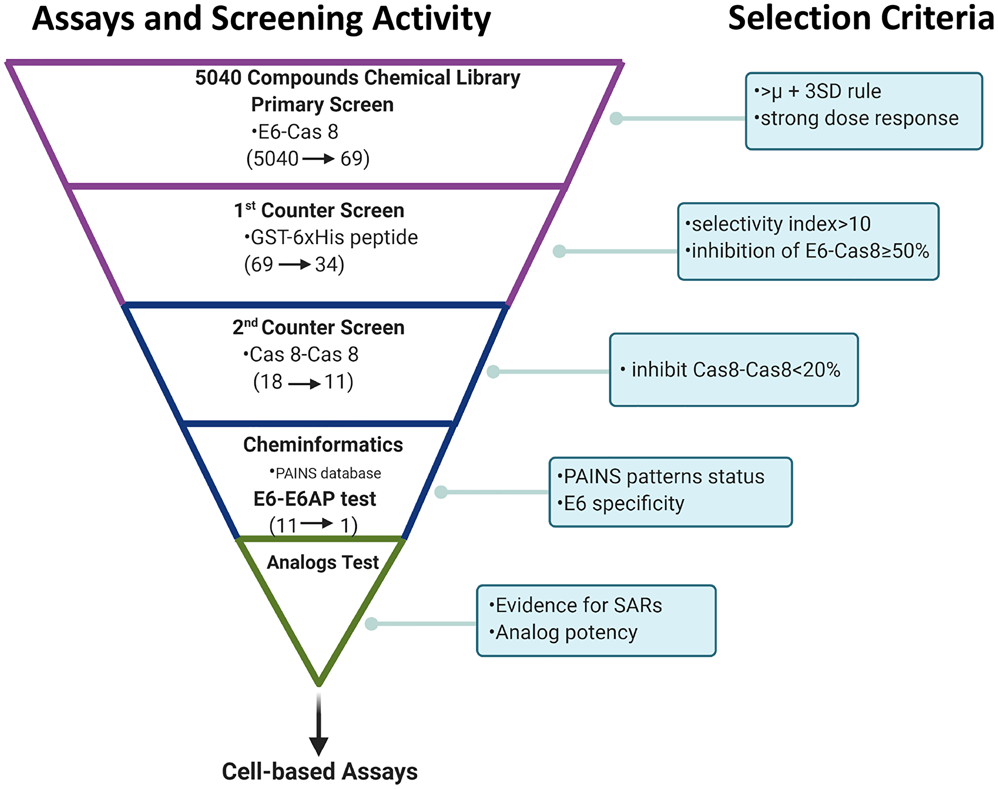 Summary of high content screening strategy.
