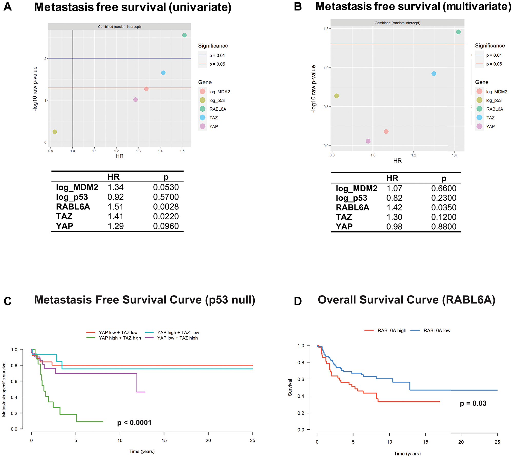 RABL6A and the Hippo pathway axis predict metastasis free survival.
