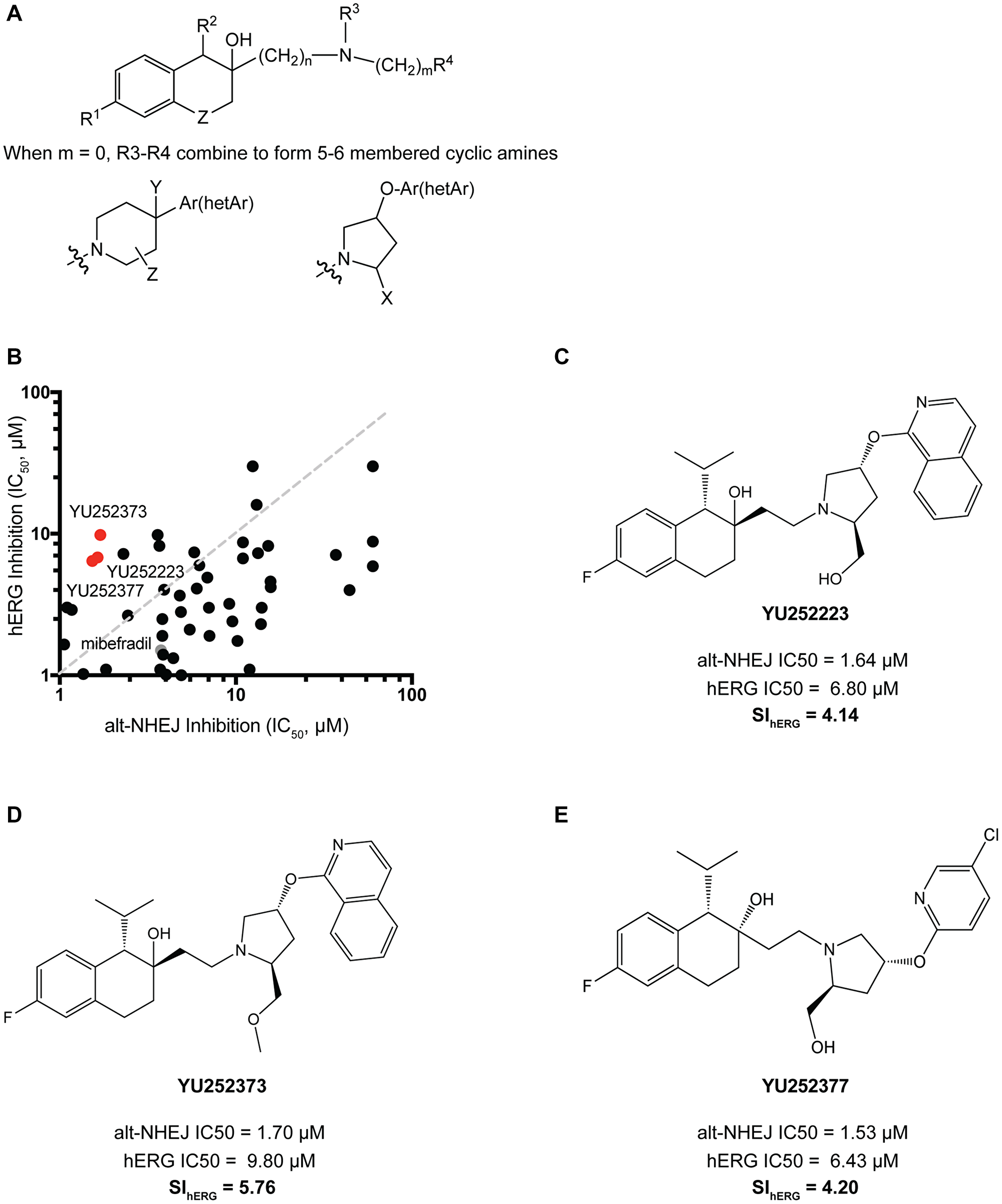 Synthesis and validation of mibefradil analogues with reduced hERG activity.