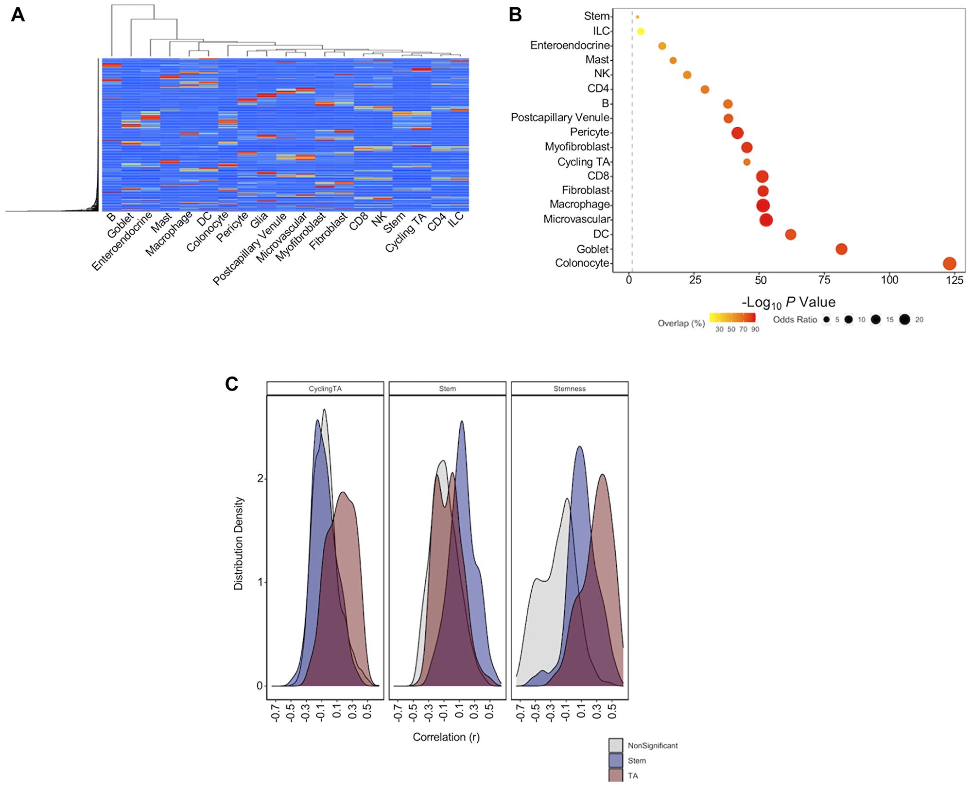 Single cell deconvolution of bulk RNA-seq datasets.