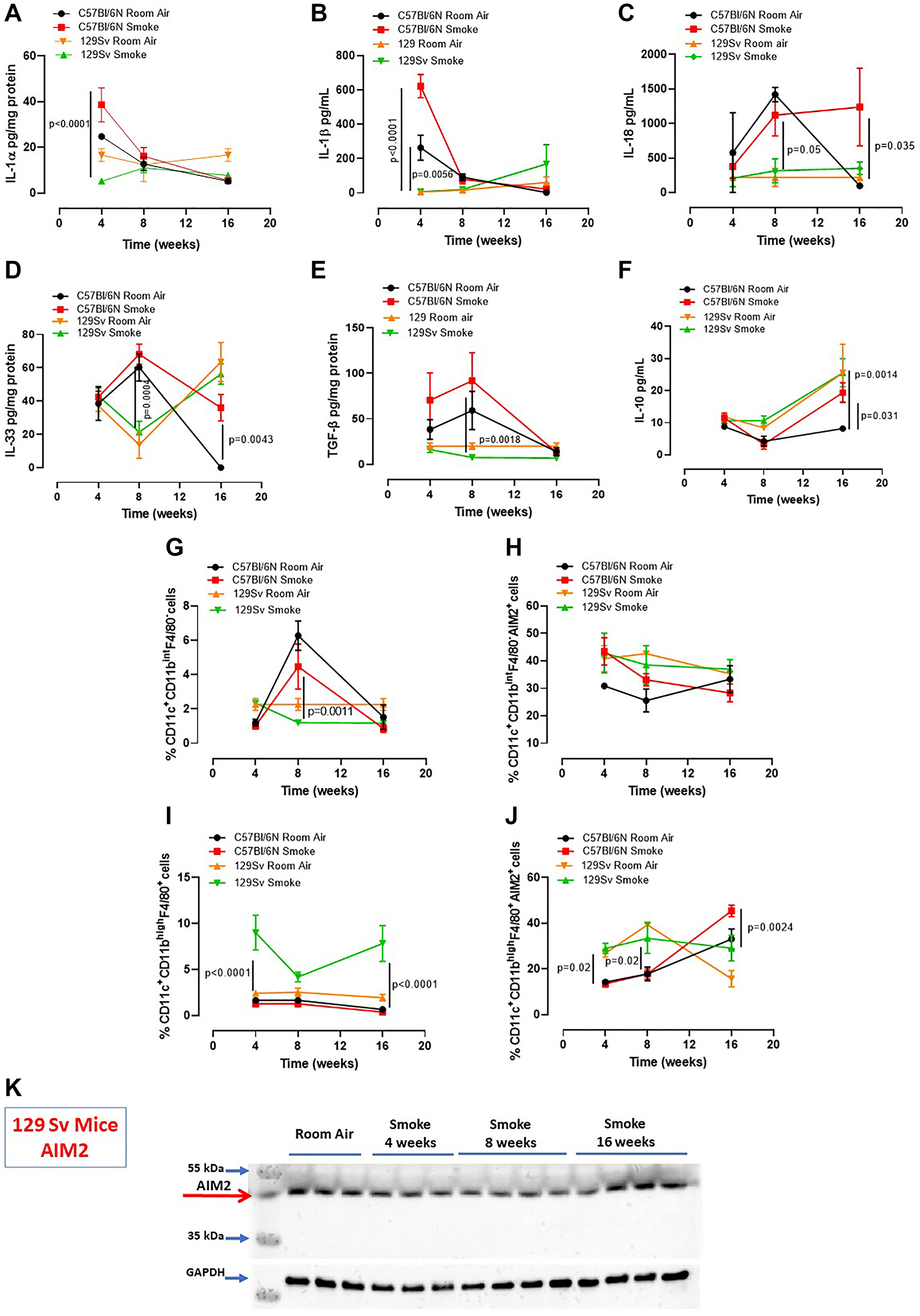 Smoking 129Sv mice had less lung inflammation than C57Bl/6N mice.