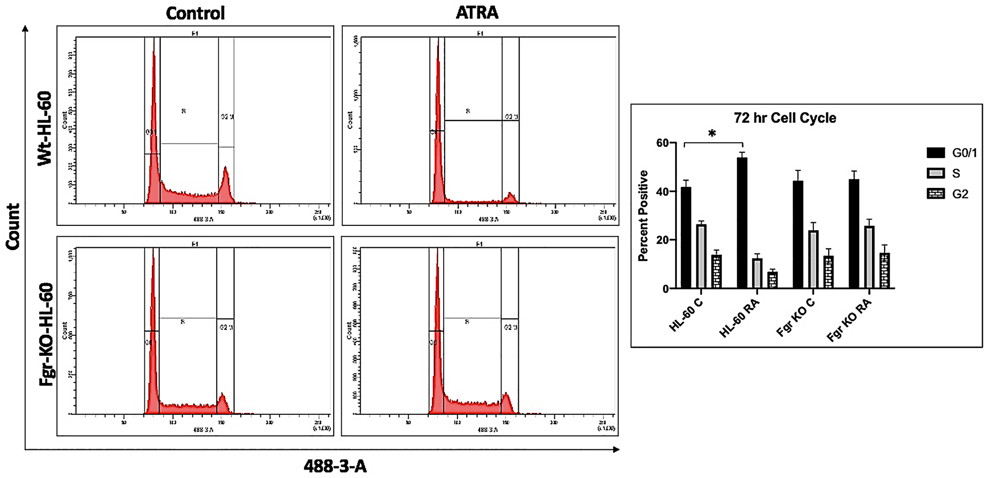 Cell cycle analysis of HL-60 wt and Fgr KO cells showing Fgr KO failed to undergo G1/0 cell cycle arrest.