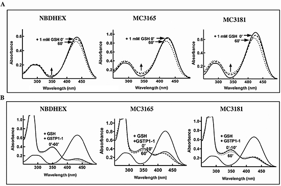 Reactivity with GSH of NBDHEX, MC3165 and MC3181.
