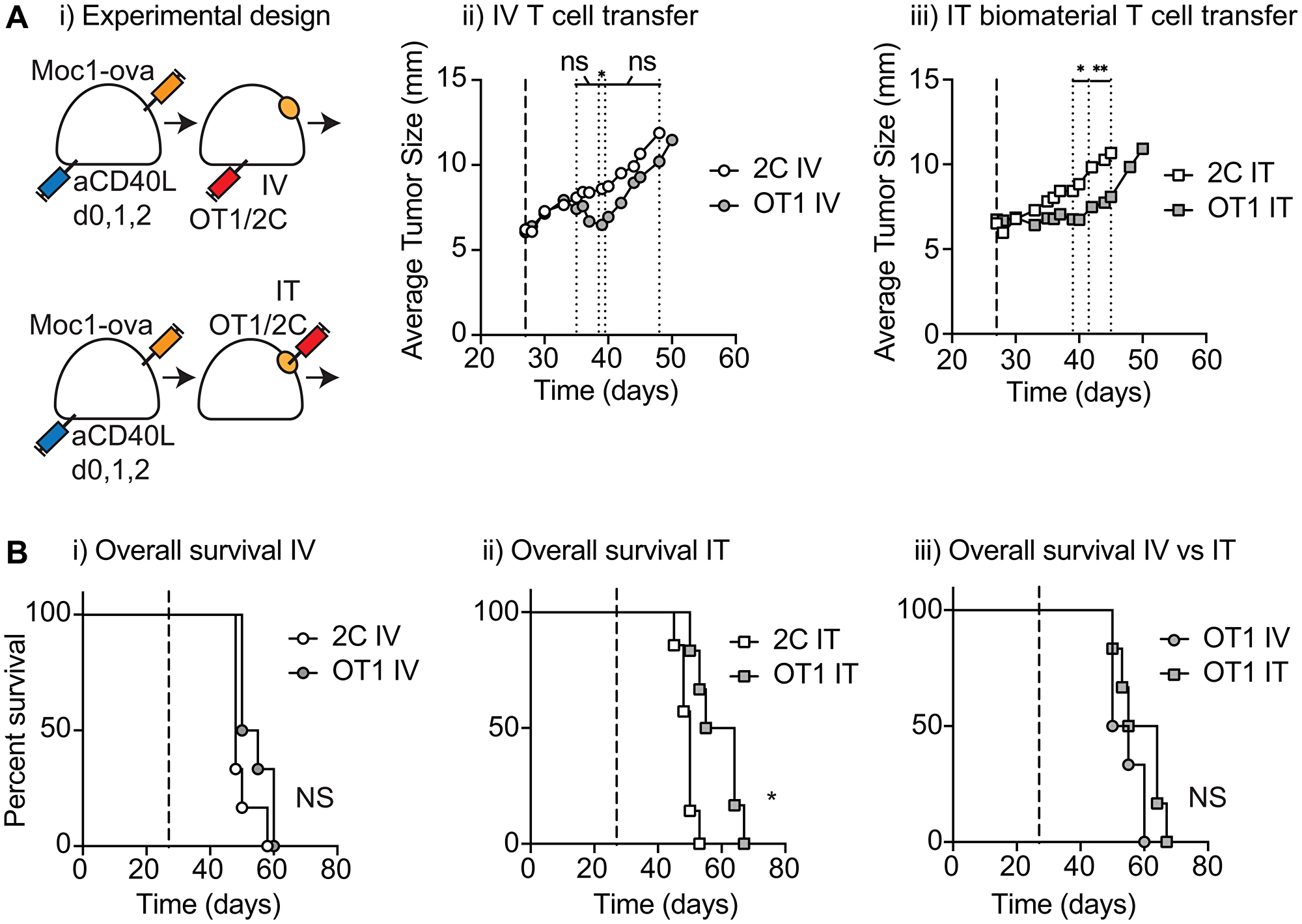 Tumor control following injection of antigen-specific T cell biomaterial.