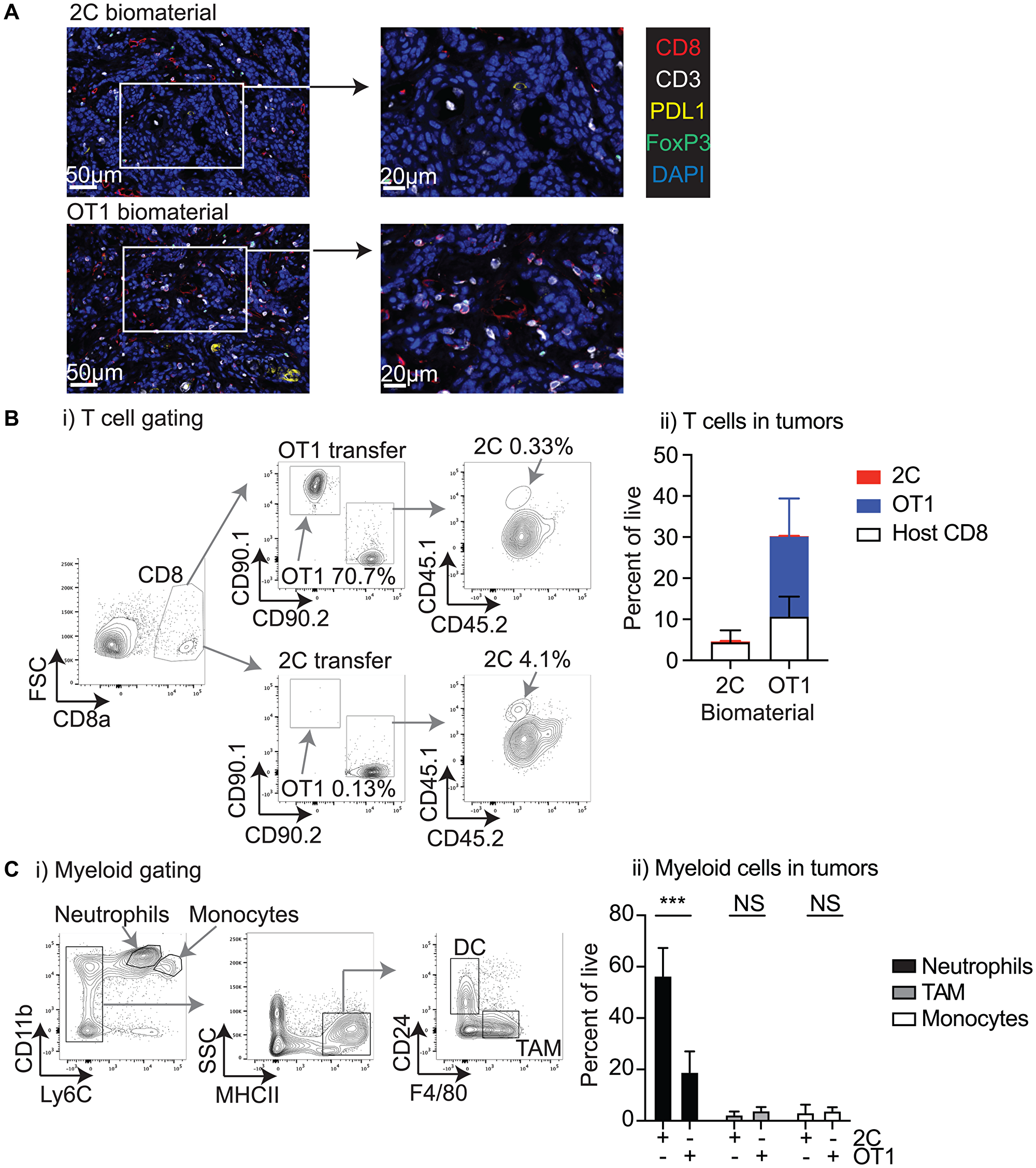 Characterization of the tumor environment following biomaterial injection.