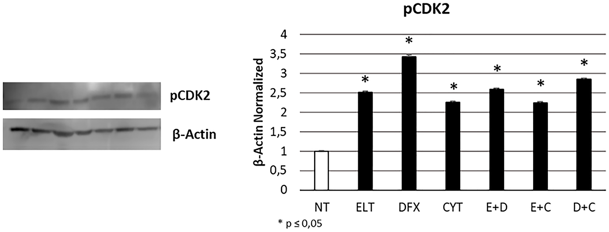 Effect of 48-hour treatments on cell cycle progression.