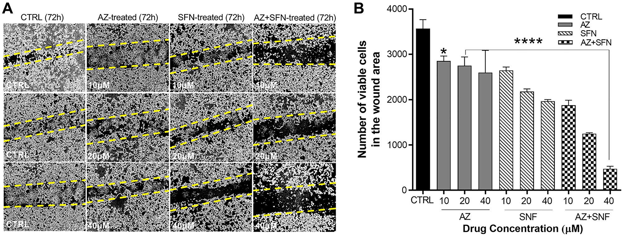 AZ, SFN, and the combination of AZ+SFN dose-dependently block the wound closure ability of typical H727 BC cells using the scratch wound assay.