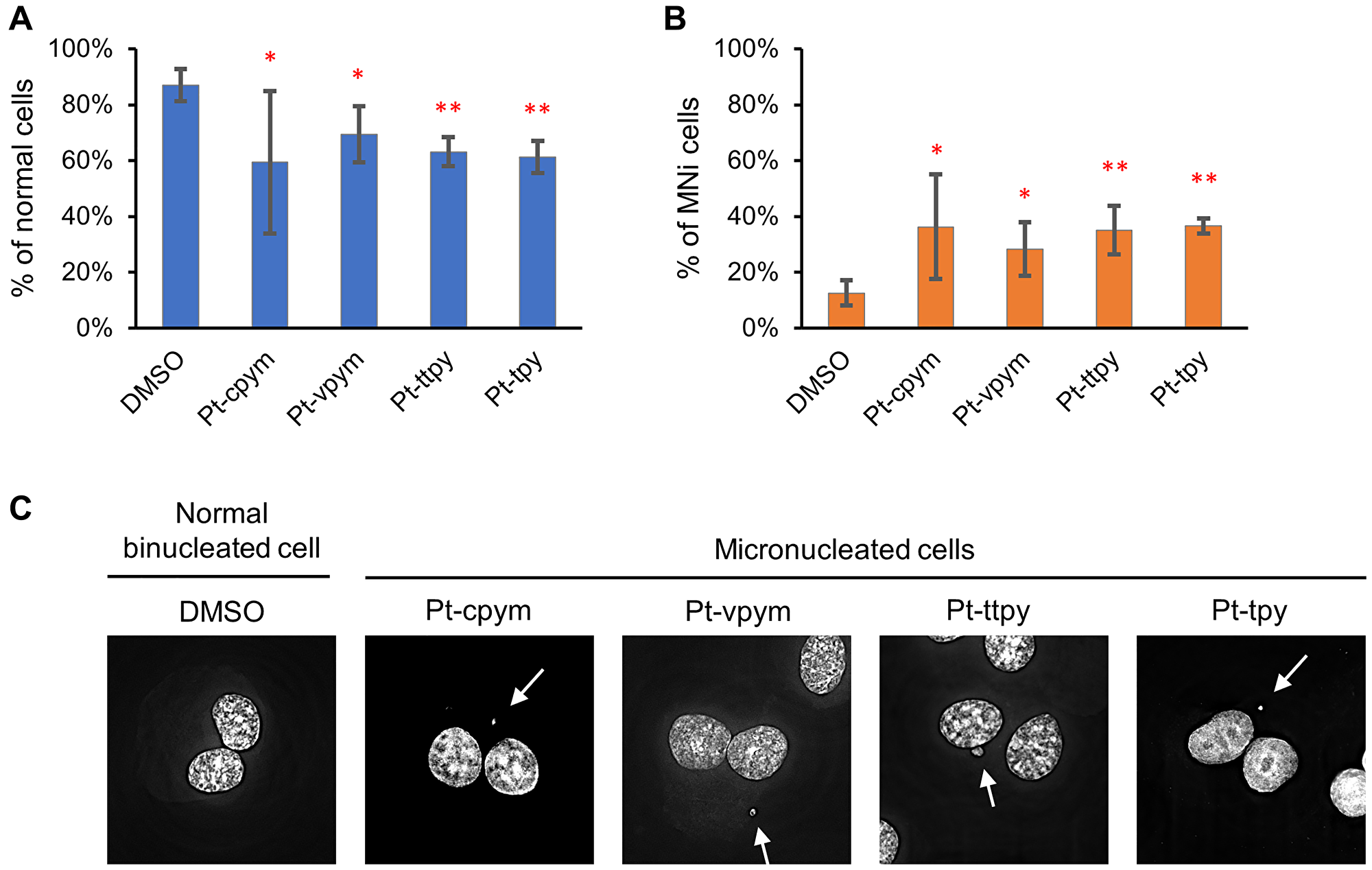 Micronucleus formation in HT1080 cells after treatment by Pt-tpy and its three derivatives, Pt-cpym, Pt-vpym and Pt-ttpy.