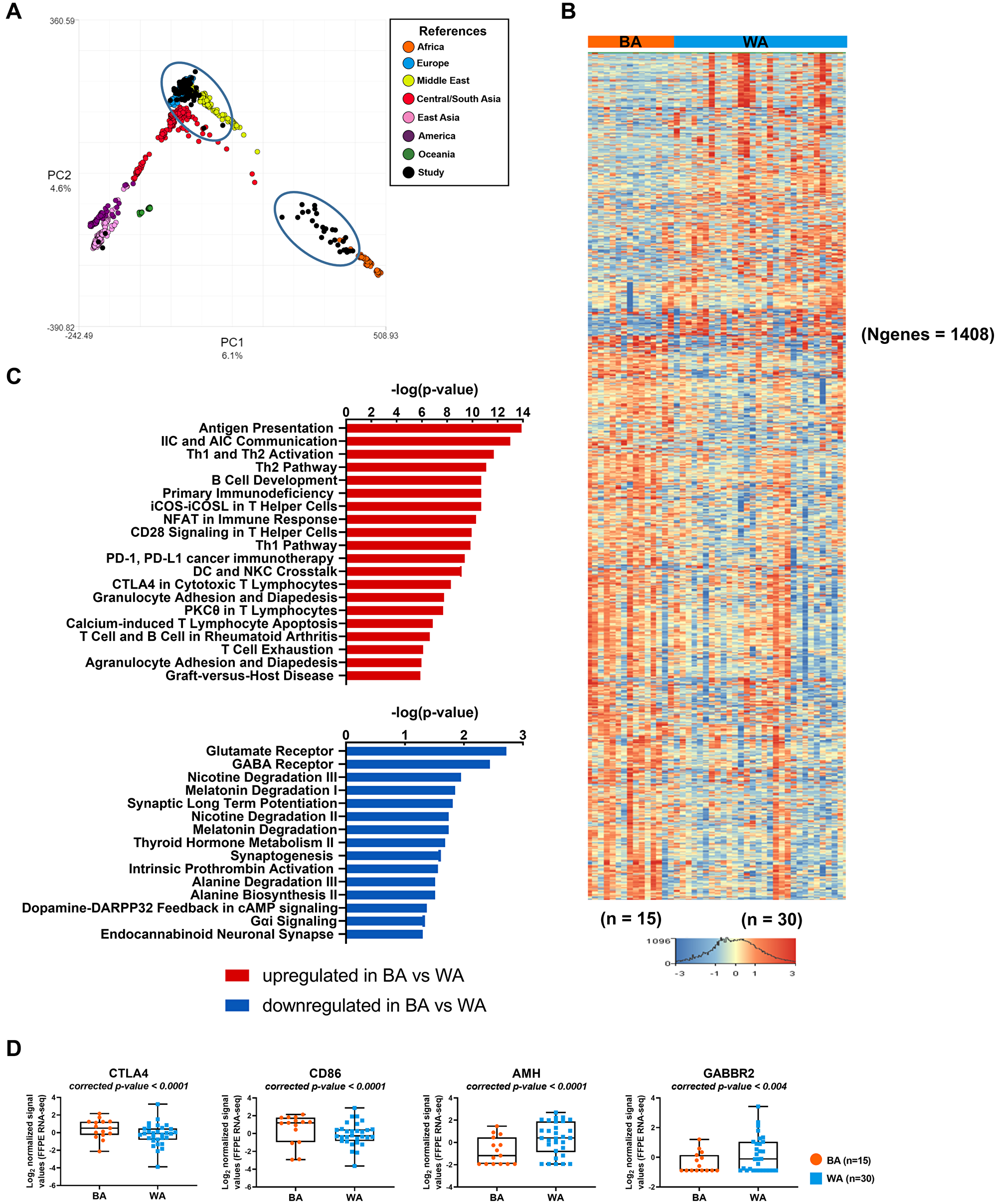 Transcriptome analysis of tumor samples of PCa patients with different geographical ancestries.