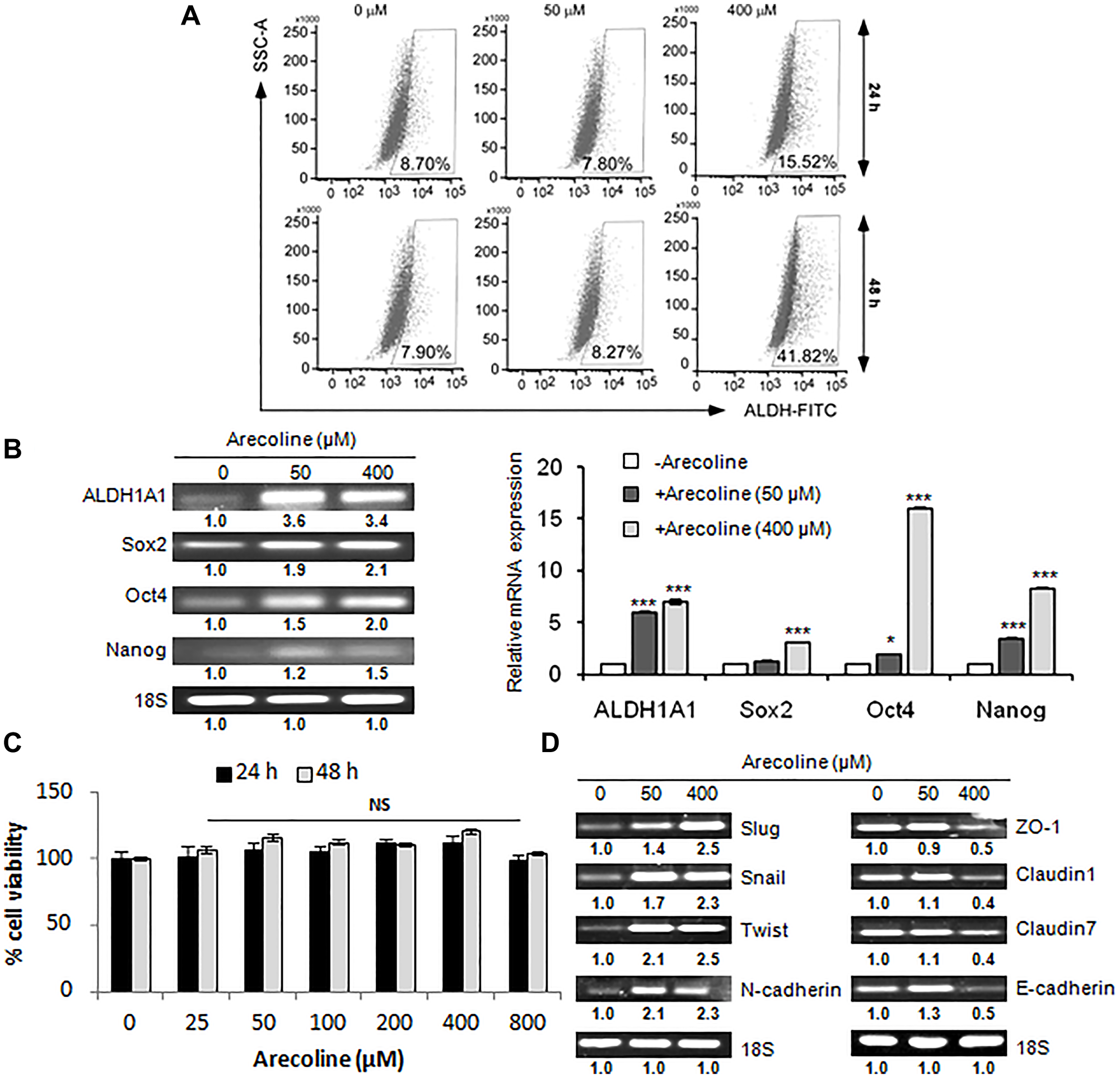 Arecoline augments stemness acquisition in HNSCC.