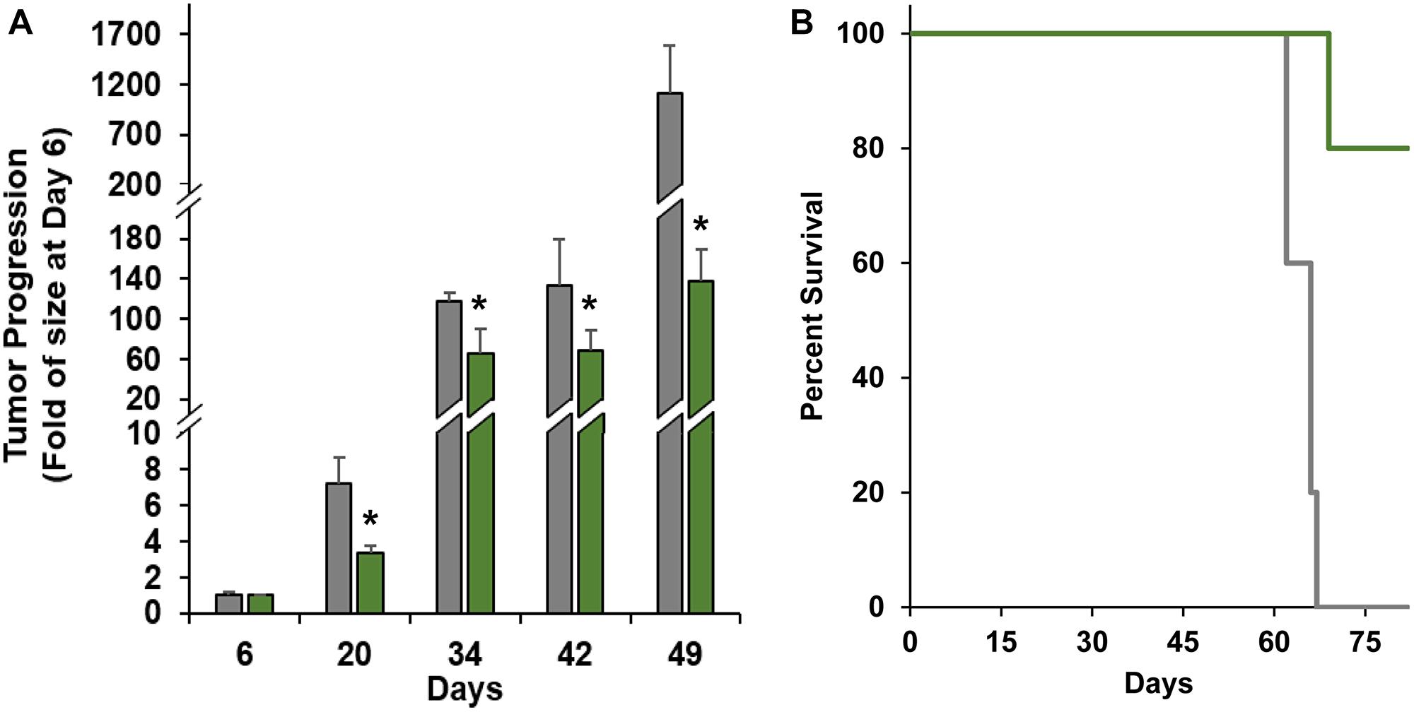 Efficacy of nanoTCEs in vivo.