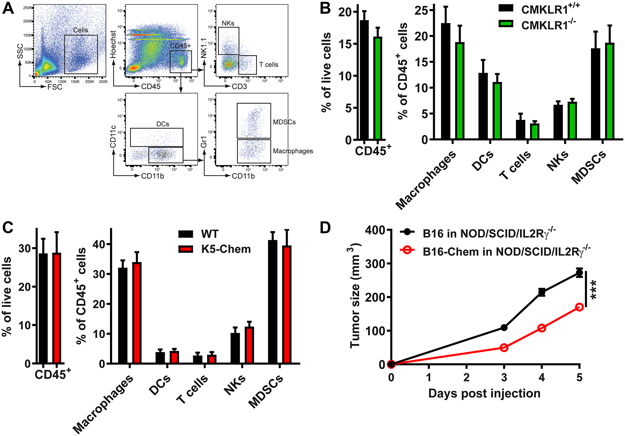 The anti-tumoral effect of chemerin is unrelated to leukocyte recruitment.