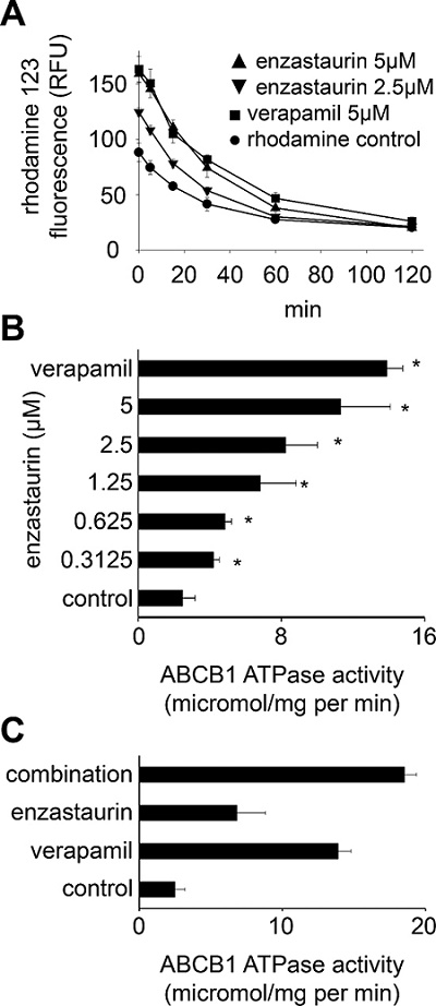 Direct interaction of enzastaurin with ABCB1.