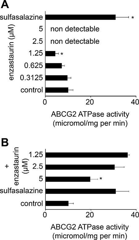 Effects of enzastaurin on the ABCG2 ATPase.