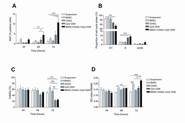 The co-culture of primary CLL cells with BMSC, CD40L and CpG ODN induces proliferation of CLL cells.