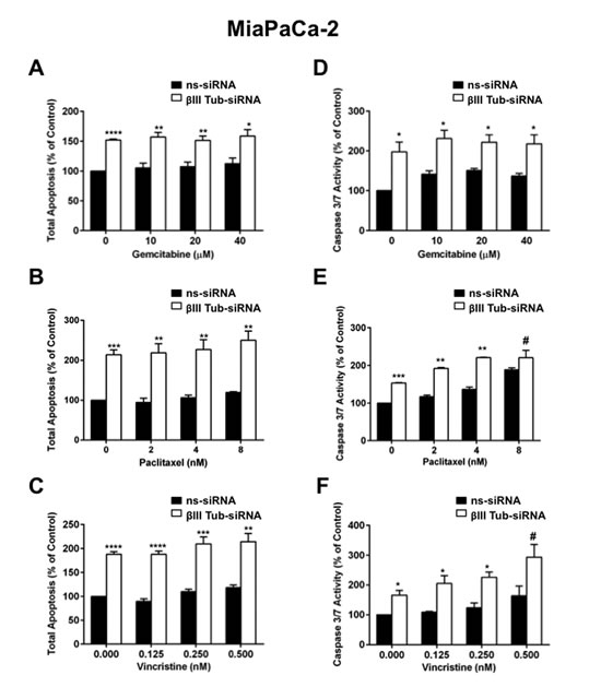 FIGURE 5: βIII-tubulin silencing induces apoptosis in MiaPaCa-2 cells.