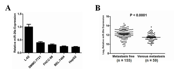 Down-regulation of miR-26a expression in human HCC, especially in metastatic HCC tumors.