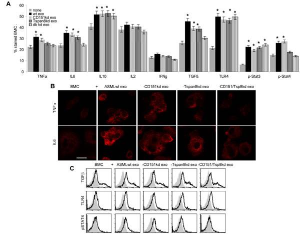Leukocyte responses to exosomal CD151 and Tspan8.