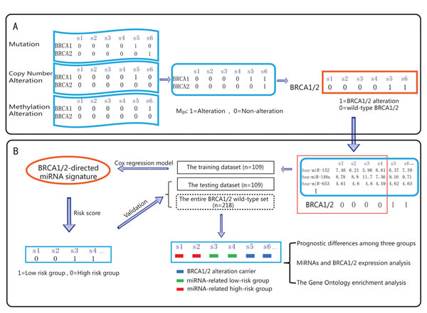 Schematic overview of our analysis procedure.