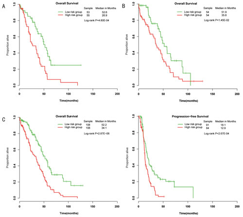Differences in overall survival and progression-free survival were assessed between the miRNA-related low-risk and high-risk groups.