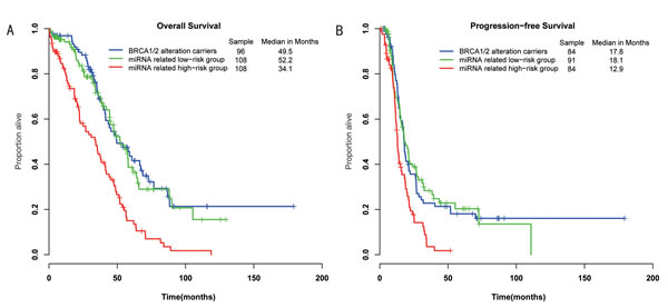 Differences in overall survival and progression-free survival were assessed among the three groups.