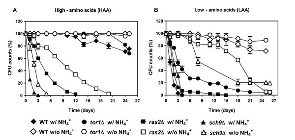 PKA and TOR pathways regulate the NH